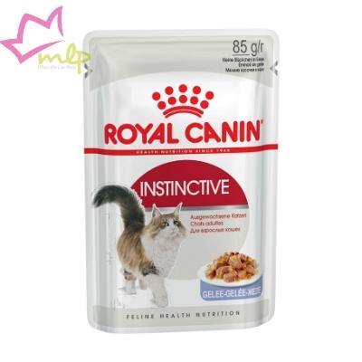 Comida húmeda equilibrada para gatos adultos, con un perfil nutricional ideal y textura delicada. Tiene una alta aceptación y ayuda a tener un peso óptimo y unas vías urinarias sanas.
