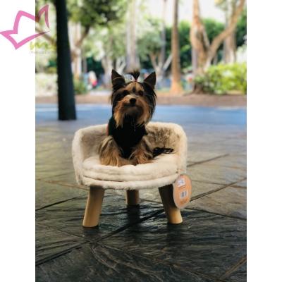 Cama Chill para gatos o perros pequeños, diseño novedoso y actual. Destaca del resto con esta cama de diseño, mas que el lugar de reposo de la mascota, es renovar la decoración del hogar.