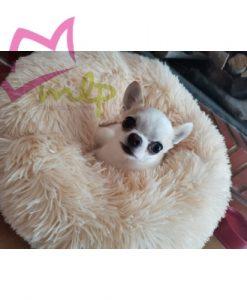 Cama Peluche quiere ayudarte a tu mascota duerma como un bebé. Esta cama tiene un tejido especial para que tu mascota esté cómoda y pueda relajarse agusto. Se convertirá en su rincón favorito. Y es que su tejido de felpa mullido ha sido especialmente diseñado para reducir el estrés en perros y gatos. Si te preocupa que tu perro tenga ansiedad cuando no estás en casa, esta cama le ayudará a reducirla y a calmarle. Además estará siempre calentito cuando se acurruque en su original cama. Disponible en tres tamaños y varios colores: Pequeña -- 40 cm de diametro Mediana --- 50 cm de diametro Grande -- 60 cm de diametro