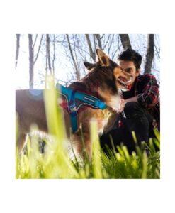Arnes Memopet con tecnologia NFC para perros Memopet da un paso al frente para revolucionar los accesorios de paseo, incorpora tecnología NFC para convertir el arnés en una tarjeta de identidad digital para mascotas. Accediendo a la aplicación gratuita memopetID, se puede grabar toda la información y datos de salud de la mascota. Todos los datos estarán disponibles en el arnés, ya no será necesario llevar la cartilla del veterinario. Solo hace falta acercar el móvil al lector NFC y se podrán consultar todos los datos desde la aplicación. Los arneses no necesitan batería, no emiten ondas electromagnéticas y su tecnología es resistente al agua. Son arneses de nylon muy resistentes, ligeros y cómodos para la mascota. Su diseño incluye borde reflector para hacerlos visibles en la oscuridad y una correa pectoral inclinada para reducir la presión en el cuello. Se fabrican en Italia con materiales de primera calidad y con tejido técnico Pelostop diseñado por My Family para evitar que el pelo de la mascota se enganche en el arnés. Disponible en 3 colores y diferentes tallas para adaptarse a mascotas de todos los tamaños. Guía tallas: S/M: Largo 40-50cm L: Largo 60-80cm XL: Largo 70-90cm