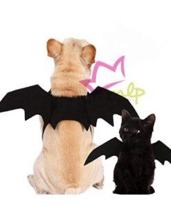 Alas Murciélago, divertido disfraz para perros y gatos. Disfraz para Halloween de lo mas sencillo y cómodo para nuestras mascotas. Con estas alas de murciélago serás el centro de atención! Las alas de murciélago se ajustan mediante dos tiras de velcro, lo cual permite adaptarse al cuerpo a la perfección. La zona a medir debe ser el contorno del pecho. Disponible en 3 tamaños. S - de 26 a 30 cm de contorno de pecho. M -de 40 a 50 cm de contorno de pecho. L - de 60 a 80 cm de contorno de pecho.